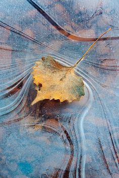 Judith Zimmerman :: Art + Photography | Abstract Ice, Natural Bridges National Park, Utah