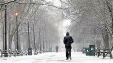 the above image showed washington park here in albany this morning 3 '14