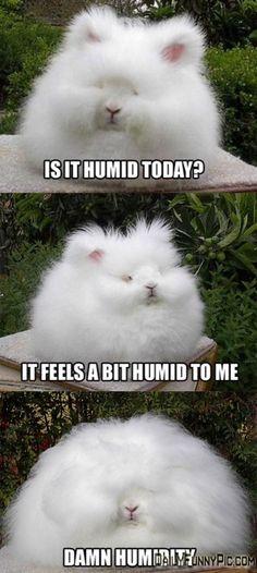 A Tad Humid - http://dailyfunnypic.com/a-tad-humid-2/