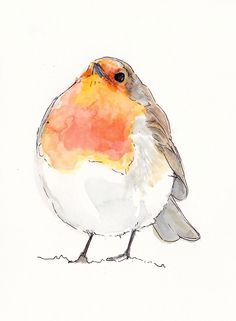 """Watercolour robin, <a href=""""http://www.cupofteaillustration.co.uk"""" rel=""""nofollow"""" target=""""_blank"""">www.cupofteaillus...</a>. Annie Brougham."""