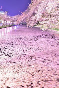 """lifeisverybeautiful: """"Hirosaki Park, Aomori, Japan by Shun Oota """""""