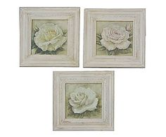 Set di 3 quadri su legno Country Rose assortiti, 34x34 cm