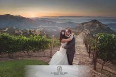 Mallette String Quartet | Luxury Estate Weddings & Events