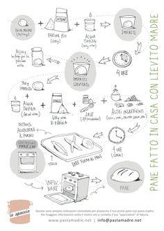 Prepara il tuo primo pane con pasta madre! Semplici e immediate indicazioni per cominciare. Maggiori info: www.pastamadre.net — con Pamela Adamo e Cesare Guinetti Neuschuler