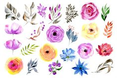 Watercolor Floral Clipart 24 Bright Branches, Flowers, Leaves, Boho Aquarelle Digital Clip Art, Watercolour Colorful Free Commercial Use PNG Floral Wreath Watercolor, Watercolor Flowers, Watercolour, Flower Branch, Flower Art, Og Dolls, Presentation Cards, Drawing Clipart, Flower Clipart