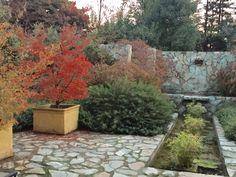 Pileta en otoño