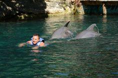 Con los delfines 2.