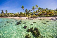 Abtauchen lohnt sich. Corn Islands sind ein Paradies für Taucher und Schnorchler. Unzählige Fischarten, farbenintensive Korallenriffe, Delfine und Schildkröten lassen sich hier aus nächster Nähe beobachten.