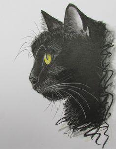 Gato negro-carbon