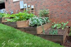 Great looking raised beds on a slope. Notice the drainage holes, too.