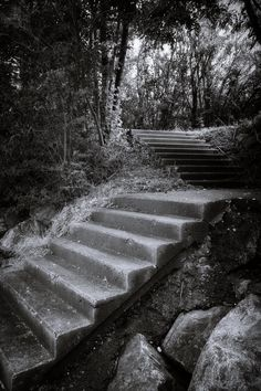 bwstock.photography  //  #stairs Black White Photos, Black And White, Free Black, Documentary, Public, Stairs, Country Roads, Photography, Stairway