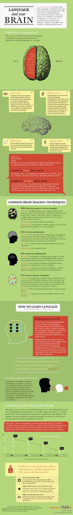 Richard Yates I have a brain injury mines Anoxic brain injury ;Infographic: Language and Your Brain - explains aphasia that can occur from a stroke or other brain injury Speech Language Therapy, Speech Language Pathology, Speech And Language, Speech Therapy, Learning Tips, Mobile Learning, Aphasia, Dyslexia, Mental Training