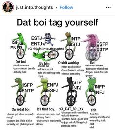 Intp Personality, Myers Briggs Personality Types, Intj Intp, Isfp, Infp 16 Personalities, Personalidad Infp, Mbti Charts, Infj Type, Memes