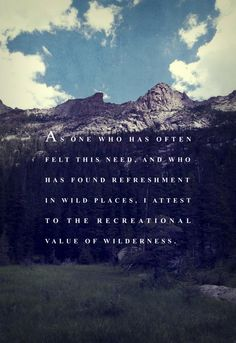 The value of wilderness.