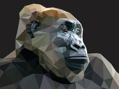 The Cross Rover Gorilla is classified as critically endangered. Their population… – My Wallpapers Page Save Animals, I Wallpaper, Endangered Species, Tile Art, Lowpoly Art, Mosaic, Wildlife, Congo, Forests