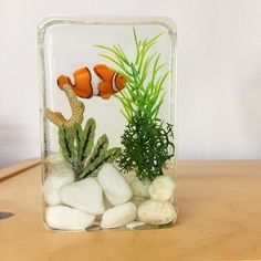 My mini resin aquarium-even has a little Nemo swimming amongst the seaweed. Cast with super Clear Casting Resin. Real coral, polymer clay seaweed, pebbles and synthetic moss. This piece was poured in lots of layers to get a 3D effect. #MillLaneStudio #resincasting #polyesterresin #clearcastingresin #minifigures #miniaquarium #nemo