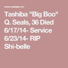 """Tashiba """"Big Boo"""" Q. Seals, 36 Died 6/17/14- Service 6/23/14- RIP Shi-belle"""