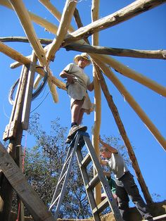 "Reciprocal Roof Construction - Pin Oak logs, note ""Charlie stick"" vertical center post"