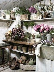 floristería   Vida con jardín, invernadero y plantas