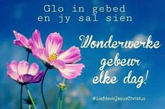 Believe in prayer and you will see, Miracles happen everyday! Thank You Lord for the miracles everyday! 2 Sides To Every Story Quotes, Miracles Happen Everyday, Pictures Of Jesus Christ, Cosmos Flowers, Goeie More, Jesus Christus, Afrikaans Quotes, Inspirational Qoutes, Thank You Lord