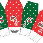 Caixa China in Box Passarinhos Natal: Large set