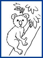 Free Kids Coloring Pages Amp Cards Koalas