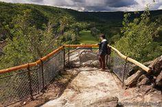 News von den Nachbarn - Welches neue Highlight unser Nachbar-Nationalpark, der Národní park Podyjí zu bieten hat und womit technikaffine Naturfreunde eine Freude haben dürften, das verrät Euch alles der neue NP Thayatal Blogbeitrag. Unbedingt reinlesen http://blog.np-thayatal.at/news-von-den-nachbarn/