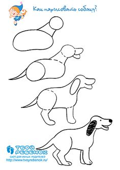 Hoe teken je een hond