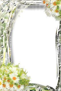 35 frames PNG Flores e cores | Imagens para photoshop
