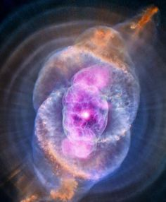 3,005 отметок «Нравится», 29 комментариев — Space (@seeking.space) в Instagram: «-CATS EYE NEBULA- The Cat's Eye Nebula or NGC 6543, is a relatively bright planetary nebula in the…»