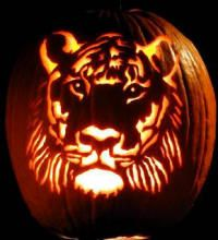 Google Image Result for http://culinarydelightcatering.com/links/custom-carved-pumpkin.jpg