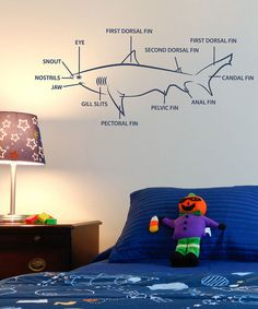 Take a look at this Blue Shark Lesson Decal Set by Shark Attack Collection on #zulily today!