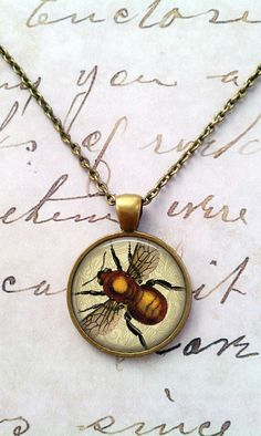 Bee Necklace Science Entomology Vintage T458 by teaANDtentacles, $8.75
