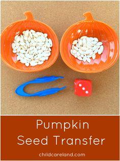 Pumpkin Seed Transfer Preschool and Kindergarten Math and Fine Motor Activity