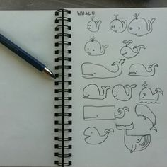 Whale sketches