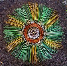 Colorful Mandala Designs Made From Flowers And Plants By Kathy Klein Mandala Art, Mandala Flower, Mandalas Painting, Flower Circle, Mandalas Drawing, Mandala Design, Flower Art, Arizona, Kentucky Horse Farms