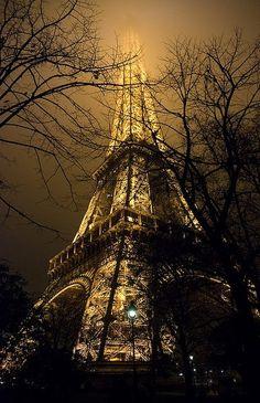 Bonsoir, Paris (✿◕ ‿◕ฺ)ノ))。₀