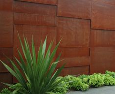 Corten Steel wall panels provide a great backdrop for the planting design.