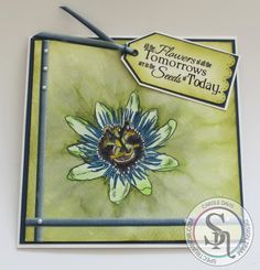 7x7 card using Sheena A Little Bit Sketchy - Passion Flower, coloured with Spectrum Aqua pens. Designed by Carole Davis #crafterscompanion #spectrumaqua