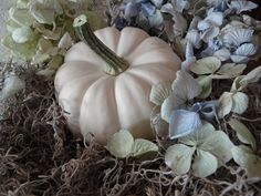 ♕ A {tiny} Cottage In The Woods: dried hydrangeas, white pumpkins, and Spanish moss