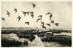 Flight of the Greenwing, Original Etching, Limited Edition, 6 ¾ x 10 ⅜ inches, Framed, black frame