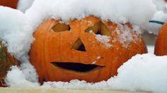"""2011 """"Storm Cancels or Postpones Halloween"""" in Connecticut"""