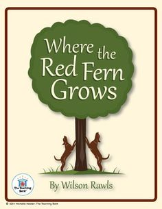 Where the red fern grows essay test