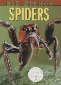 Nic Bishop Spiders (Sibert Honor Book) by Nic Bishop http://www.amazon.com/dp/0439877563/ref=cm_sw_r_pi_dp_0Q2jub0E51QHY