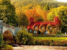 "Photo by La Maison des Fleurs : ""Isn't this just amazing! Autumn colours, where the sunlight hits the cottage that houses the Tu Hwnt i'r Bont tearooms on the banks of the River Conwy in Wales, UK. Fall Pictures, Fall Photos, Fall Pics, Random Pictures, Funny Pictures, Places Around The World, Around The Worlds, Autumn Photography, Belle Photo"