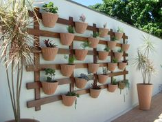 Inspiration for a potted succulent wall.
