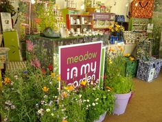 Start planning for spring sowing now, and come and talk to us for help & advice
