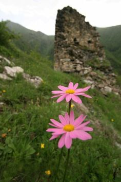 Summer in South Ossetia