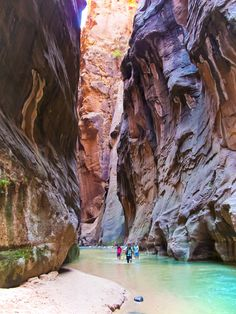 The Narrows is one of the most unique Zion Day Hikes. For much of the hike, you'll be walking THROUGH a river. Be sure to bring waterproof socks and quick-drying shoes!