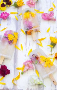 Boozy ice lollies, bursting with bubbly champagne and edible flowers. Worlwide beaches & clubs on www. Ice Pop Recipes, Popsicle Recipes, Juice Recipes, Summer Recipes, Champagne Popsicles, Granita, Champagne Flowers, Mantecaditos, Think Food